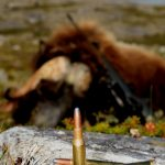 Extreme hunting in the greenlandic nature. Hunting for Musk ox trophies.